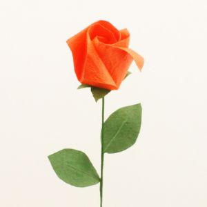 Single rosebud, Red orange, [1R38]